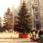 初めてイタリアで過ごしたクリスマスと生ハムの話。